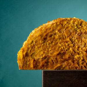 Ben Clevers, meester binder en top arrangeur heeft met het geel verkleurde blad van de Ginkgo-Biloba een halfrond bladobject gemaakt. In combinatie met de zwarte natuurstenen ondergrond een bijzonder geheel.