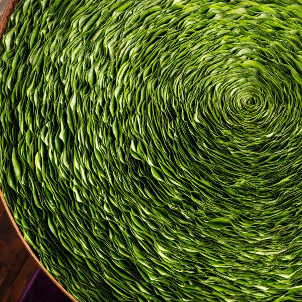 Deze cortenstalen schaal is gevuld met een bladobject met het blad van de Gaultheria. Het enigszins golvende blad geeft een speelse draai aan dit kunstwerk gemaakt door Ben Clevers. Ben is meester binder en arrangeur voor bloemwerken voor grote evenementen en feesten.