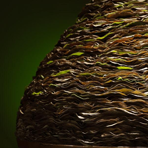 Het grote ronde blad van de Aristolochia is gebruikt voor dit bladobject. Vele bladeren en vele uren waren nodig om dit te maken. Ben Clevers maakt de objecten om ze rondom te kunnen bekijken. Overal wordt even veel aandacht aan besteed. Zó zie je de hand van de meester.