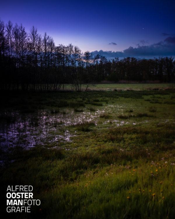 In de Onlanden is na de regenbuien in het voorjaar tijd nog veel water te zien op laaggelegen weides. Het is als je er dichtbij wil komen uitkijken voor natte voeten. In dit waterbergingsgebied heb je op veel plekken kans op natte voeten.