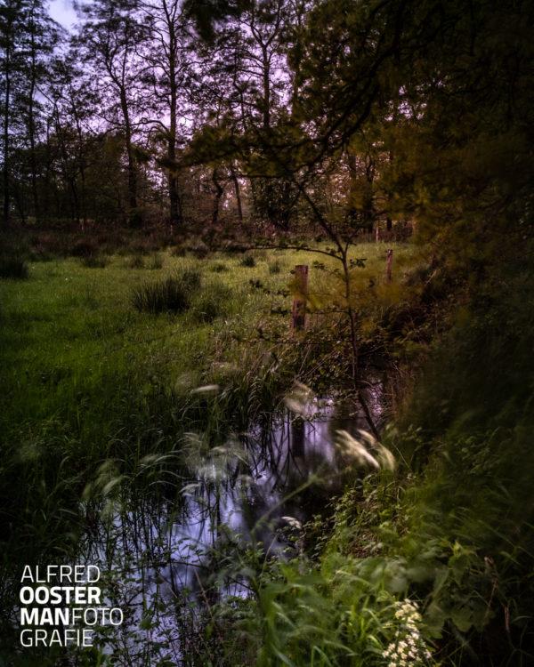 Midden in de Onlanden vindt je 'het Beeld' een paar met bomen omzoomde weilanden. 's Morgens vroeg heeft het een wat mysterieuze sfeer waar je een enkele keer reeën of een vos kunt tegenkomen.
