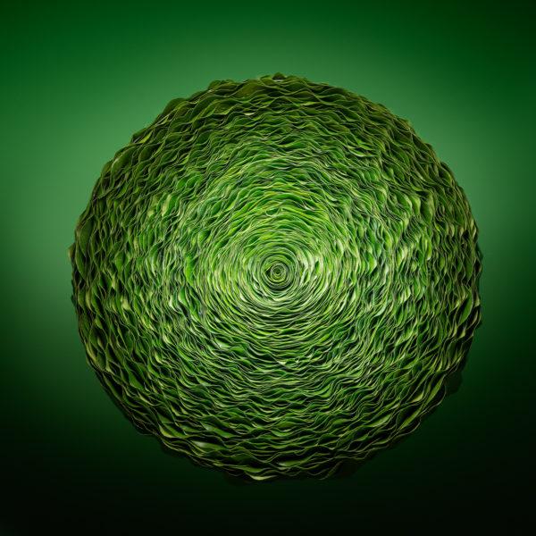 Dit bladobject met blad van van de Gaultheria is cirkelvormig en de fris groene kleur heeft het een heldere uitstraling. Blaadje voor blaadje worden de bladobjecten gemaakt door Ben Clevers en zijn team.