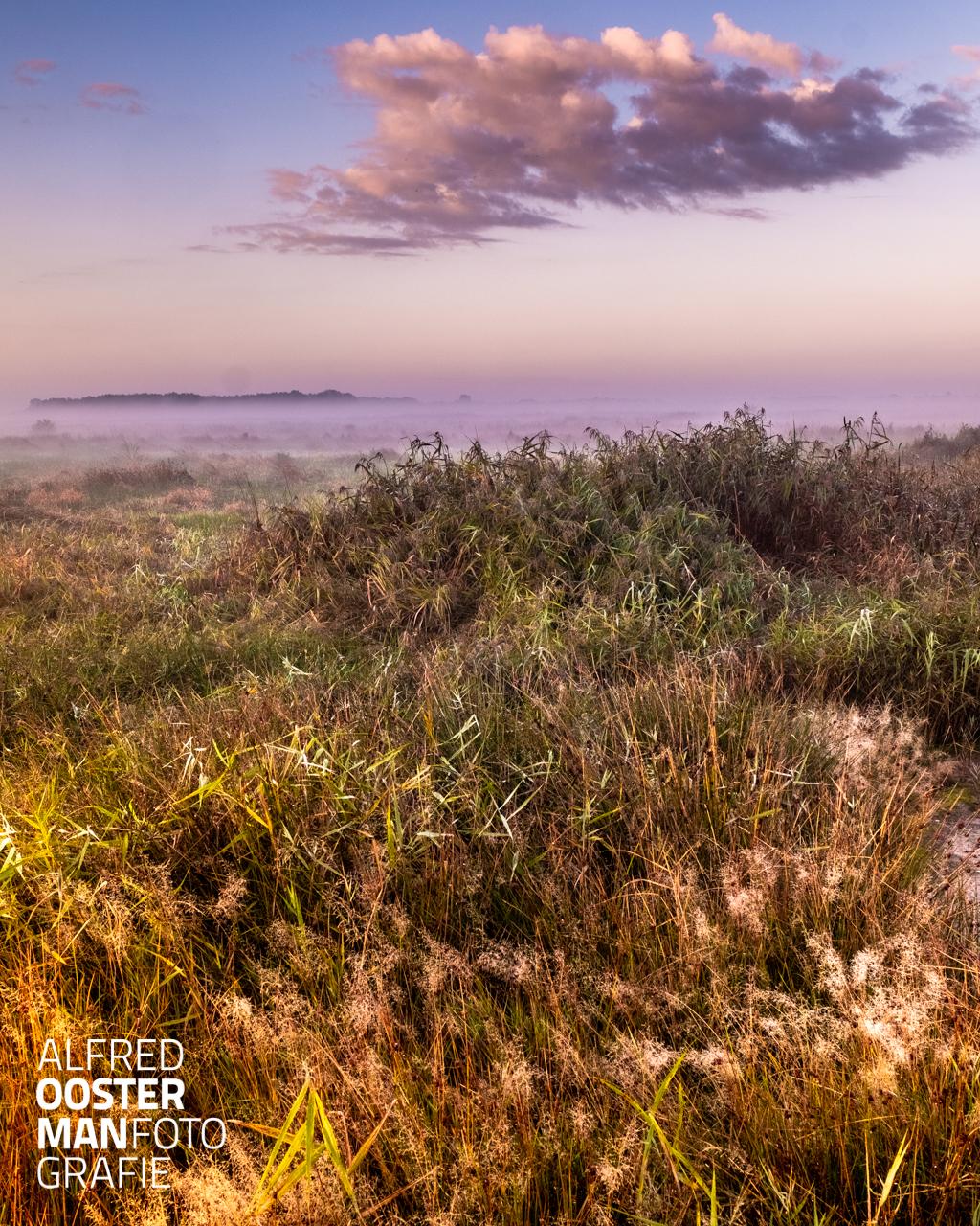 Extra tijd. Een rondje om het Leekstermeer, het karakter van het landschap is door de kleinschaligheid van het gebied wel erg verschillend. In twee uren fietsen en fotograferen is het rondje gemaakt. Vanmorgen met prachtig weer is er dan ook heel verschillend beeld te maken. Het is wel duidelijk dat de herfst is begonnen. De kleurrijkheid is enorm, groen, geel, oranje gecombineerd, het is feest! De dag beginnen in de buitenlucht en in beeld brengen wat de moeite waard lijkt is heerlijk. Door vroeg op pad te gaan voelt dat als extra tijd.